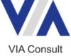 VIA Consult GmbH und Co. KG